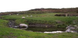 Pond Created